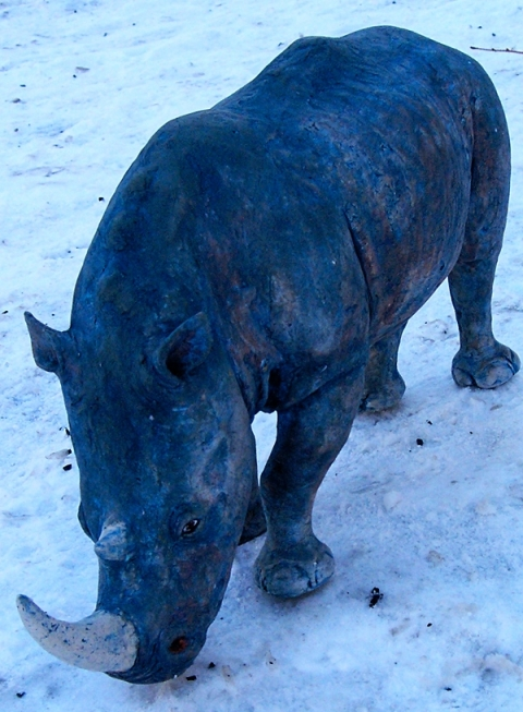 RHINO WINTER 1