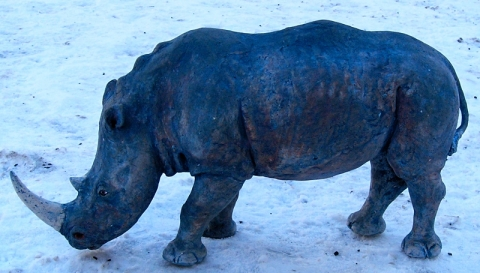 RHINO WINTER